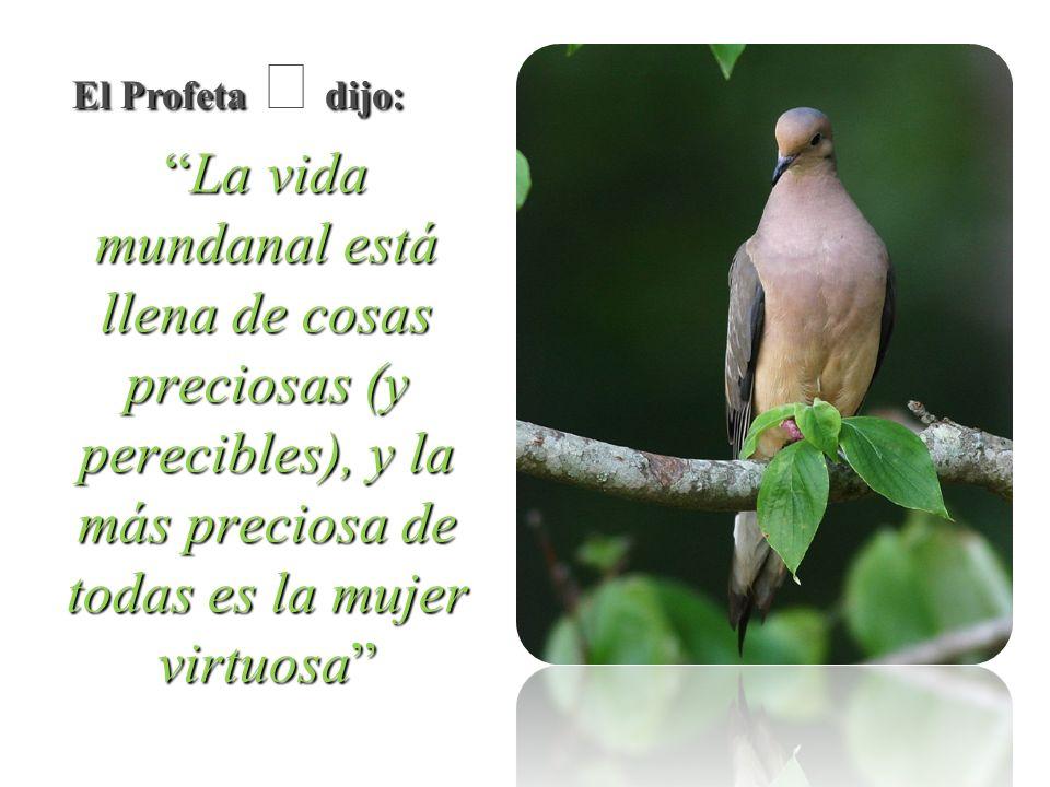 El Profeta  dijo: La vida mundanal está llena de cosas preciosas (y perecibles), y la más preciosa de todas es la mujer virtuosa