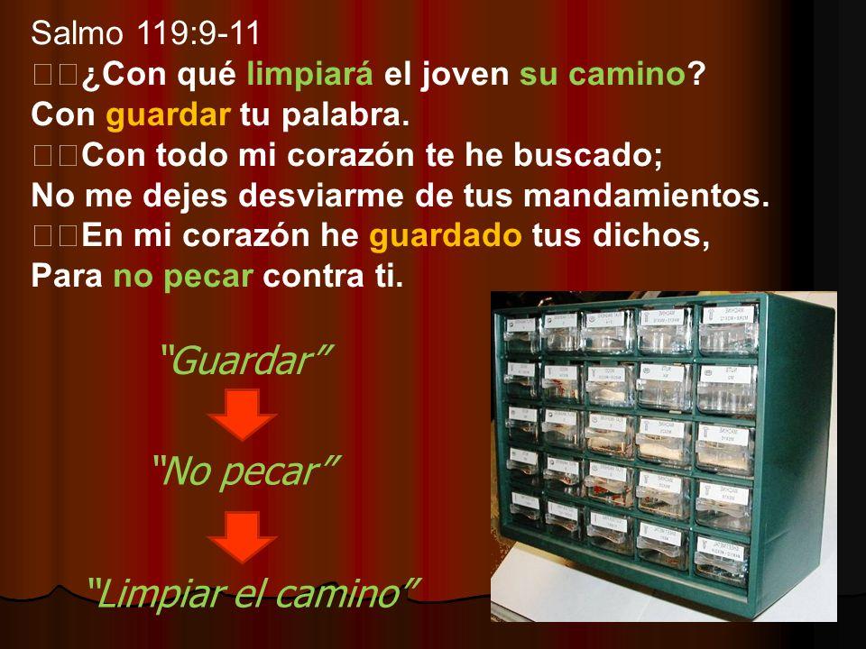 Guardar No pecar Limpiar el camino Salmo 119:9-11
