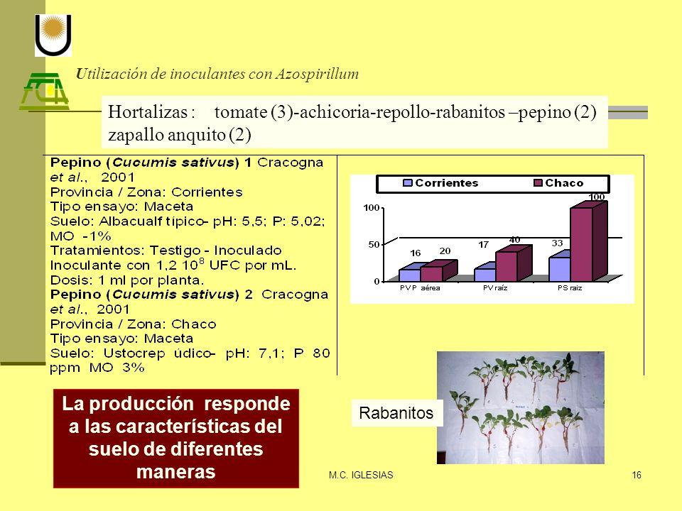 Utilización de inoculantes con Azospirillum