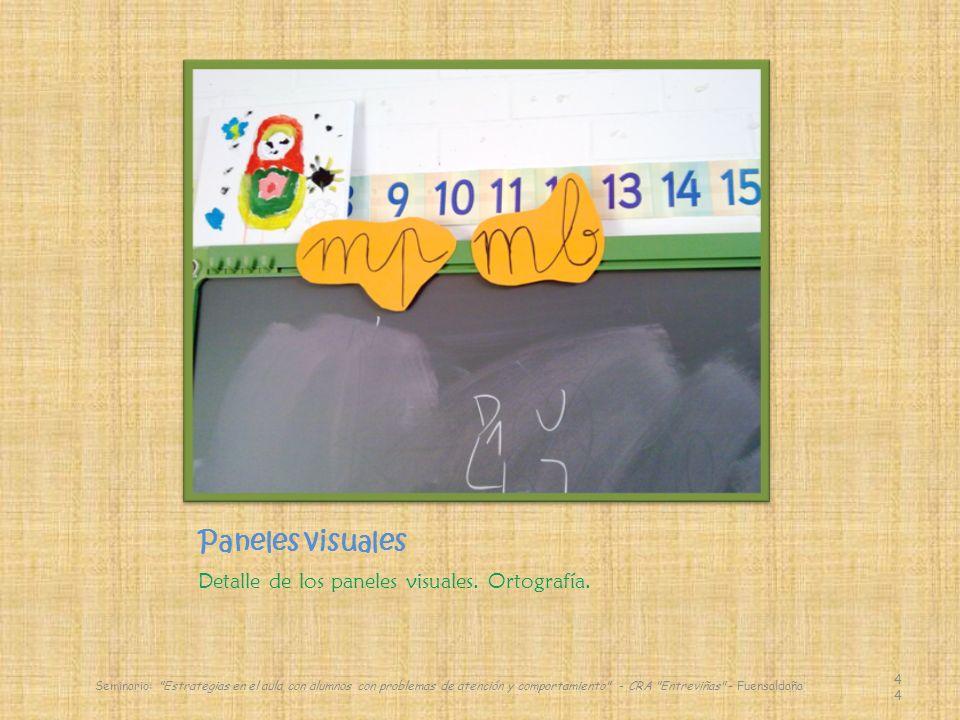 Paneles visuales Detalle de los paneles visuales. Ortografía.