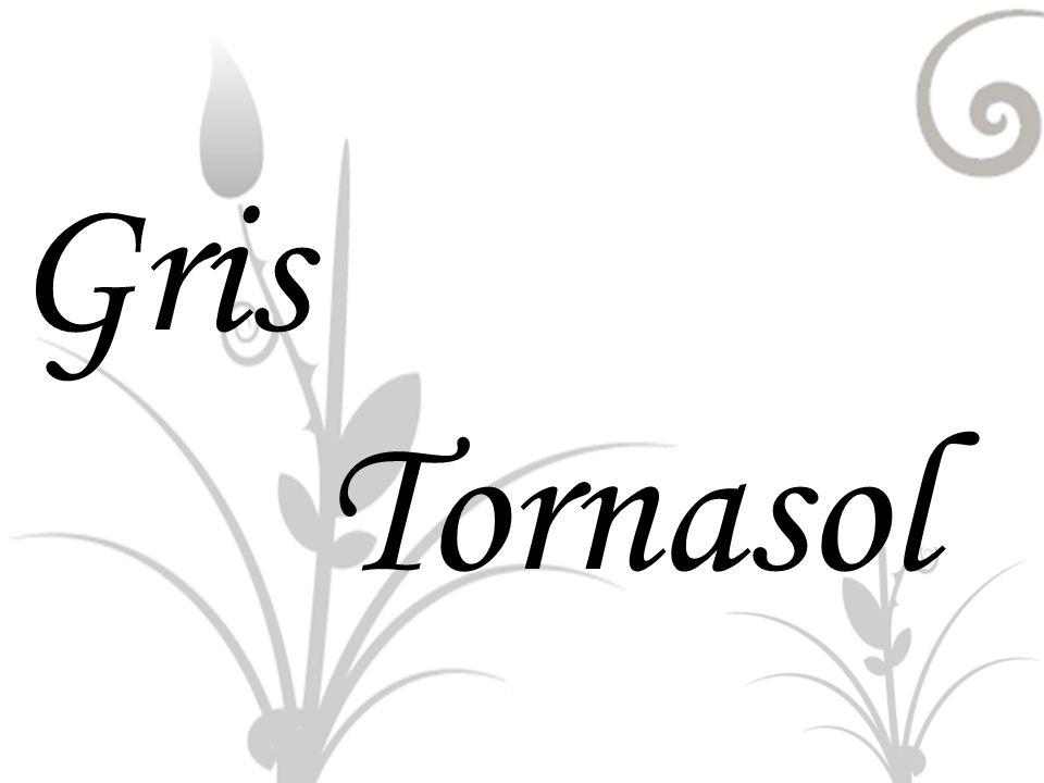 Gris Tornasol