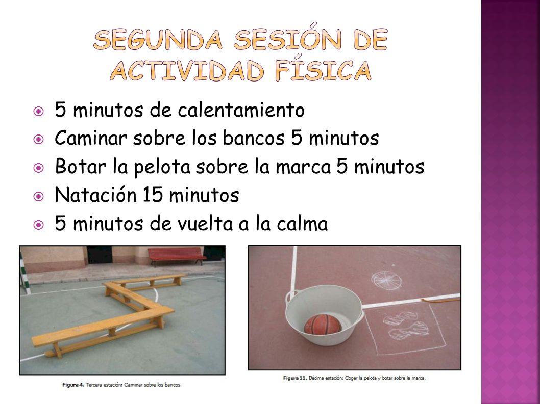 Segunda sesión de actividad física