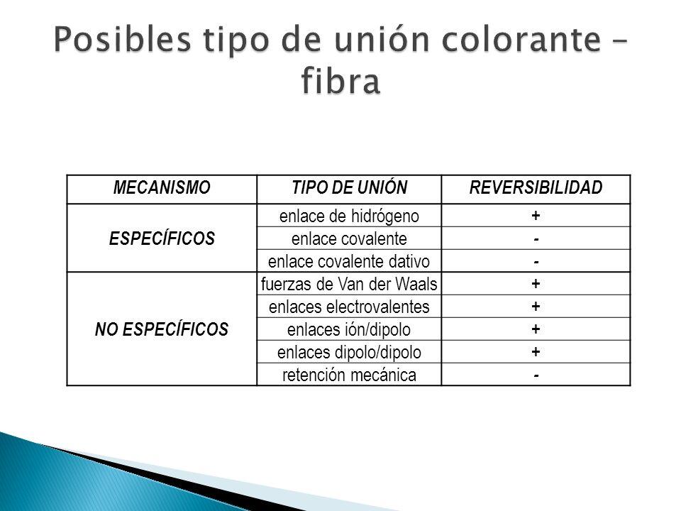Posibles tipo de unión colorante – fibra