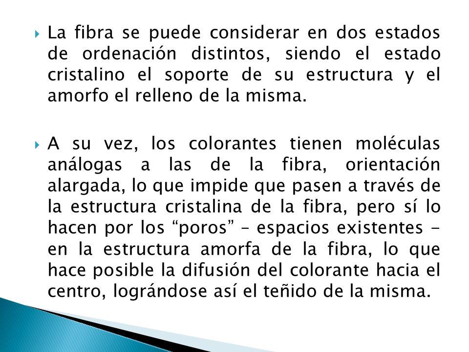 La fibra se puede considerar en dos estados de ordenación distintos, siendo el estado cristalino el soporte de su estructura y el amorfo el relleno de la misma.