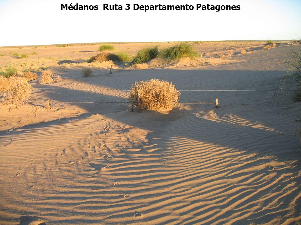 Médanos Ruta 3 Departamento Patagones