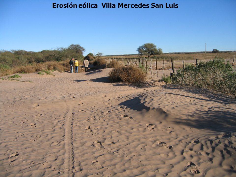 Erosión eólica Villa Mercedes San Luis
