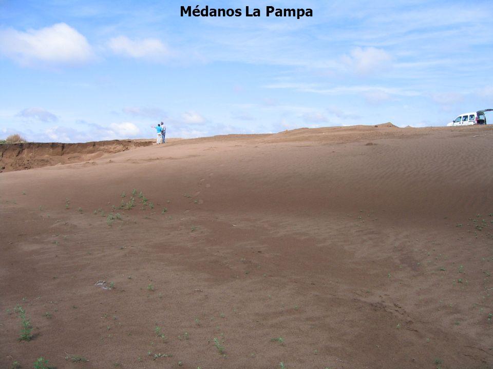 Médanos La Pampa
