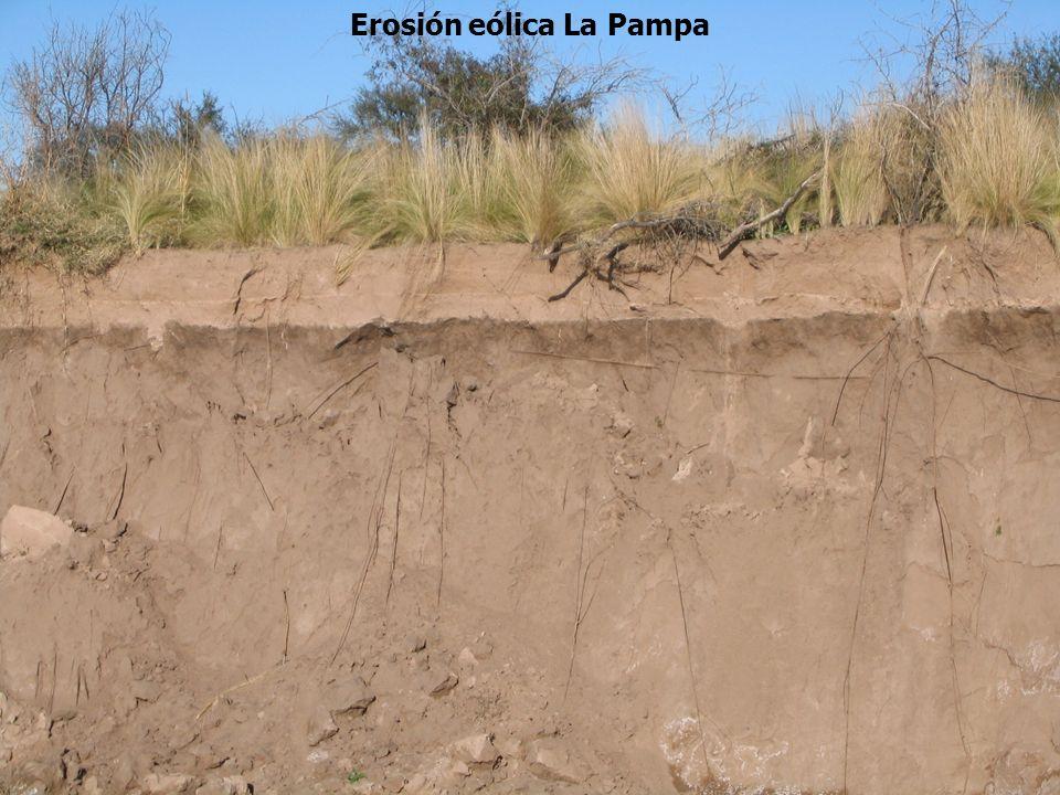Erosión eólica La Pampa