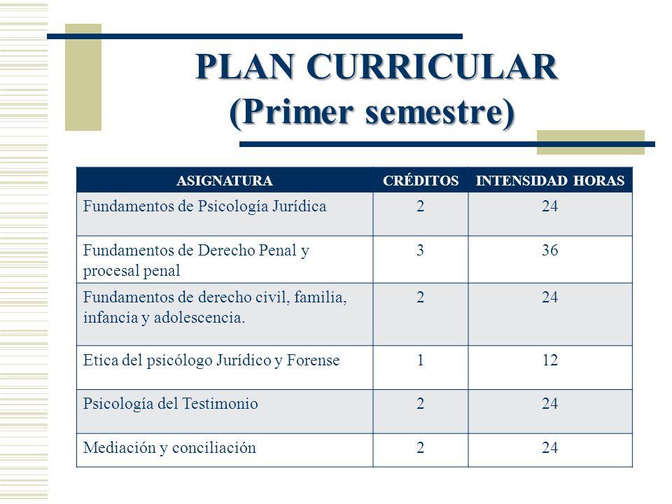 PLAN CURRICULAR (Primer semestre)