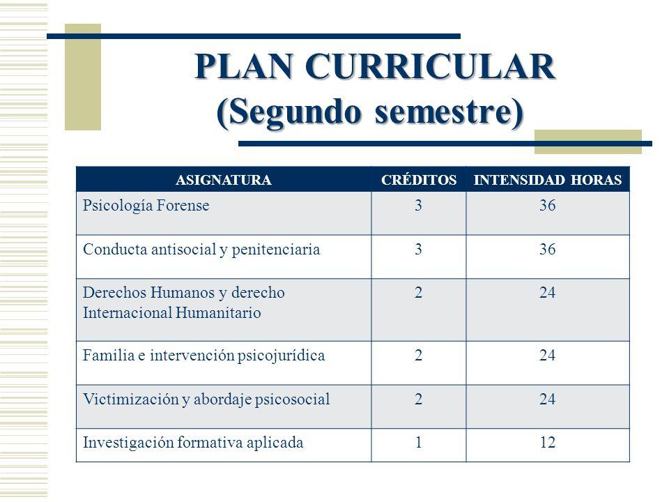PLAN CURRICULAR (Segundo semestre)