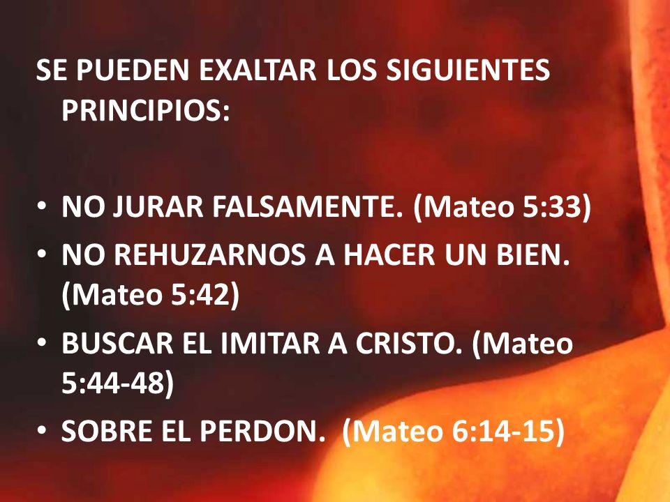 SE PUEDEN EXALTAR LOS SIGUIENTES PRINCIPIOS: