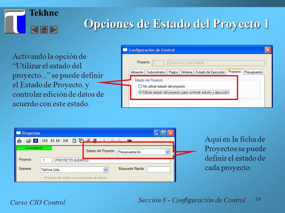 Opciones de Estado del Proyecto 1