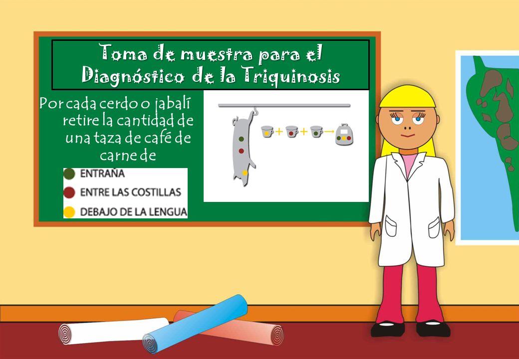 Diagnóstico de la Triquinosis
