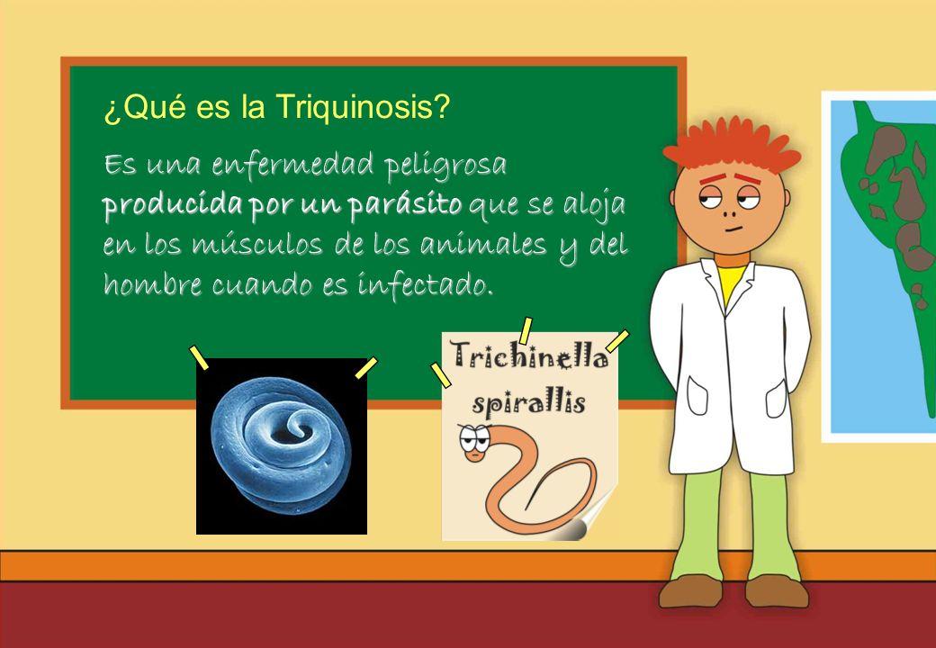 ¿Qué es la Triquinosis