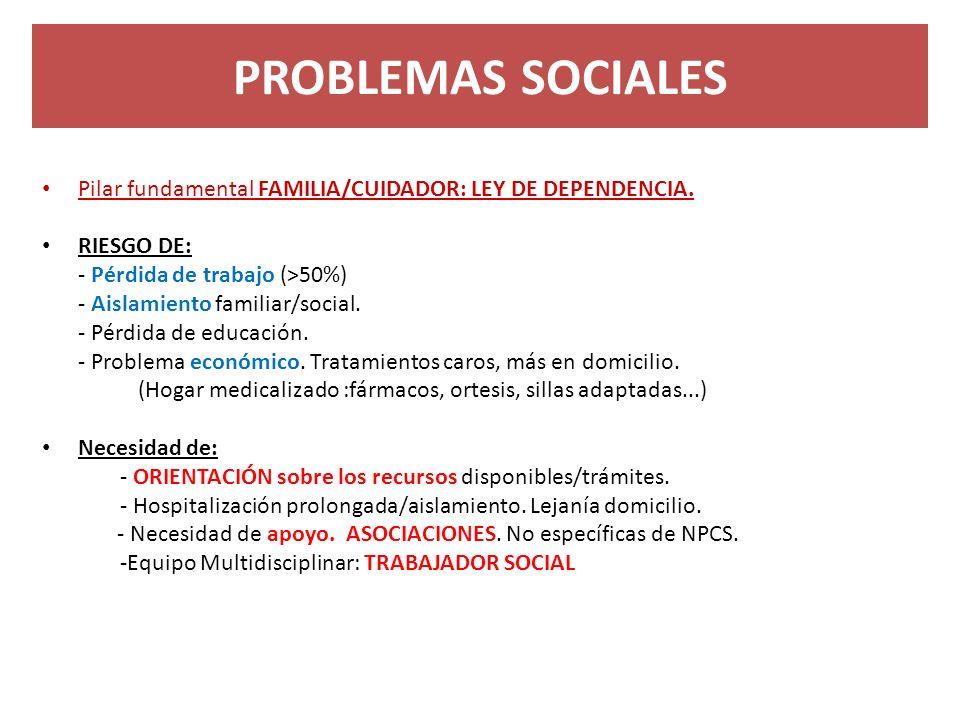 PROBLEMAS SOCIALES Pilar fundamental FAMILIA/CUIDADOR: LEY DE DEPENDENCIA. RIESGO DE: - Pérdida de trabajo (>50%)