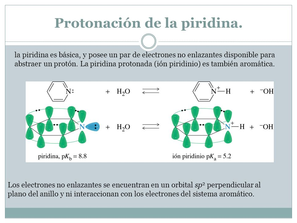 Protonación de la piridina.