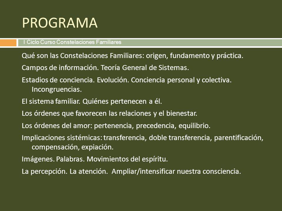 PROGRAMA I Ciclo Curso Constelaciones Familiares.