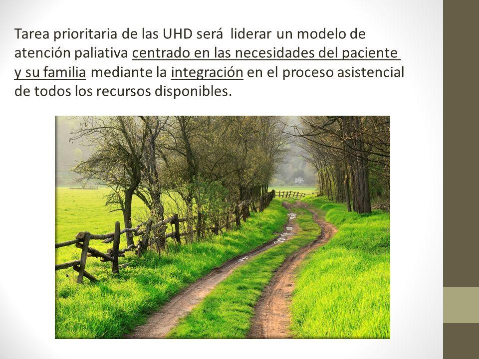 Tarea prioritaria de las UHD será liderar un modelo de