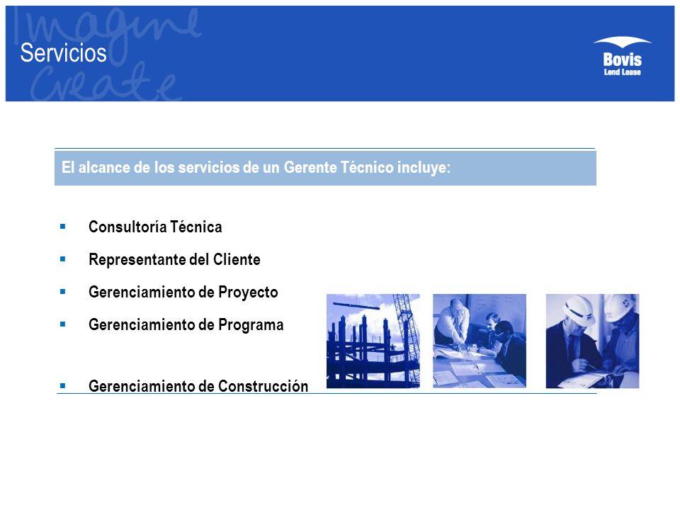 Servicios El alcance de los servicios de un Gerente Técnico incluye: