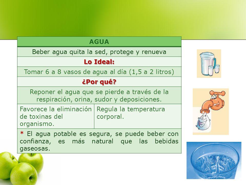 Beber agua quita la sed, protege y renueva Lo Ideal: