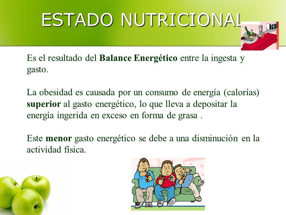 ESTADO NUTRICIONAL Es el resultado del Balance Energético entre la ingesta y gasto.