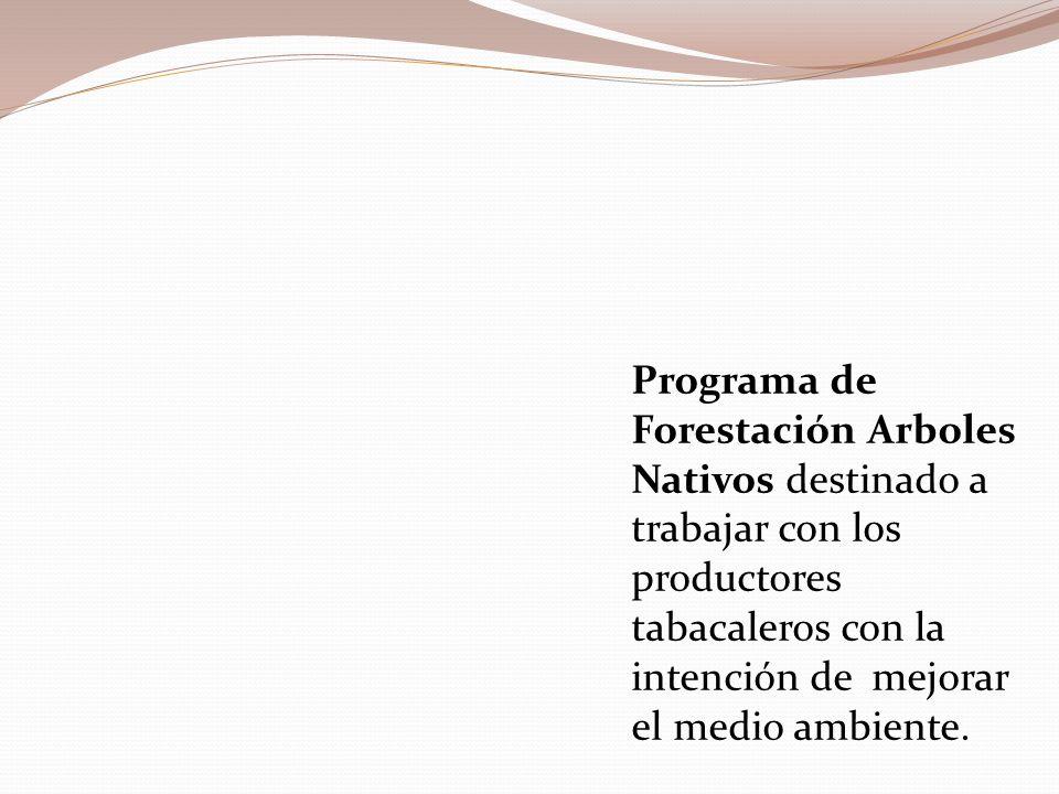 Programa de Forestación Arboles Nativos destinado a trabajar con los productores tabacaleros con la intención de mejorar el medio ambiente.