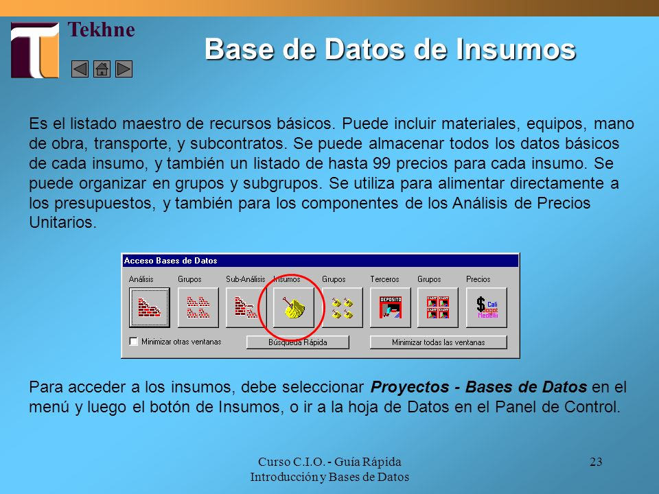 Base de Datos de Insumos