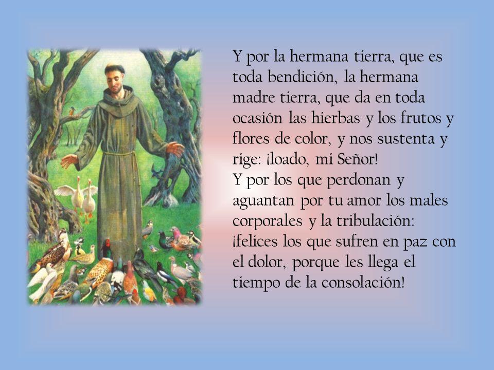 Y por la hermana tierra, que es toda bendición, la hermana madre tierra, que da en toda ocasión las hierbas y los frutos y flores de color, y nos sustenta y rige: ¡loado, mi Señor!