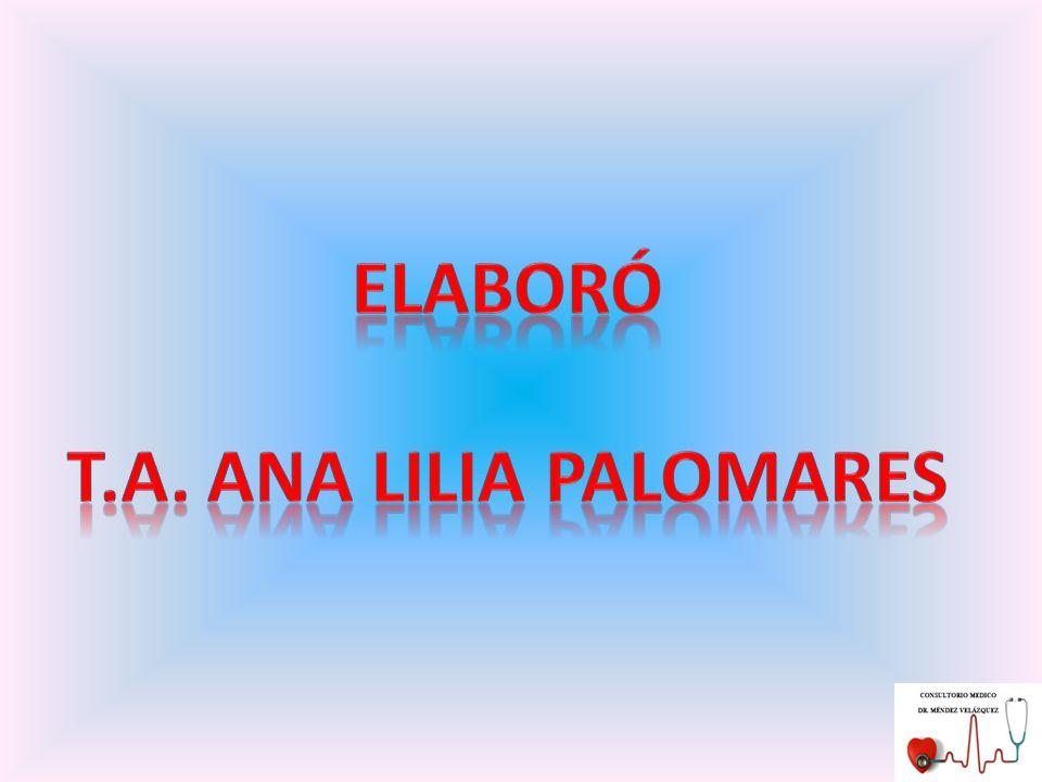 ELABORÓ T.A. ANA LILIA PALOMARES