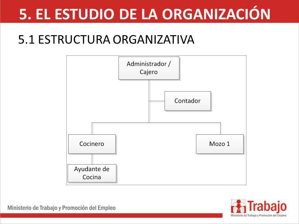 5. EL ESTUDIO DE LA ORGANIZACIÓN