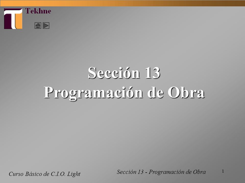 Sección 13 Programación de Obra
