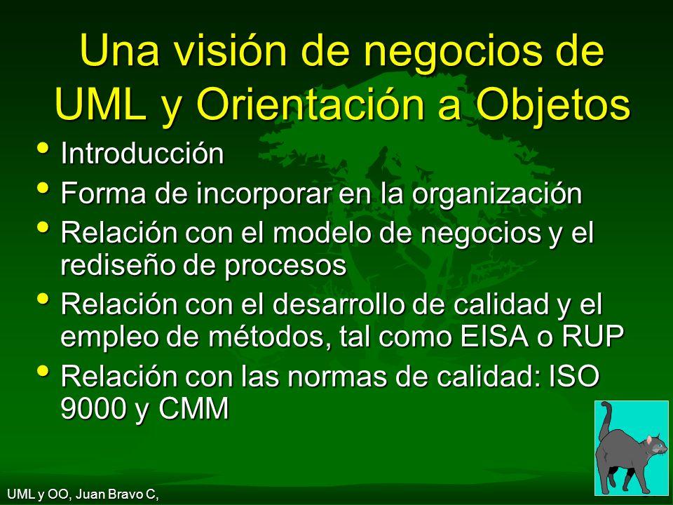 Una visión de negocios de UML y Orientación a Objetos