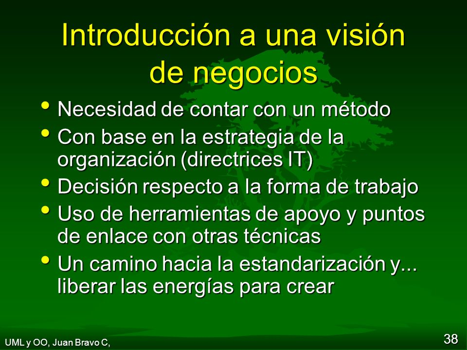 Introducción a una visión de negocios