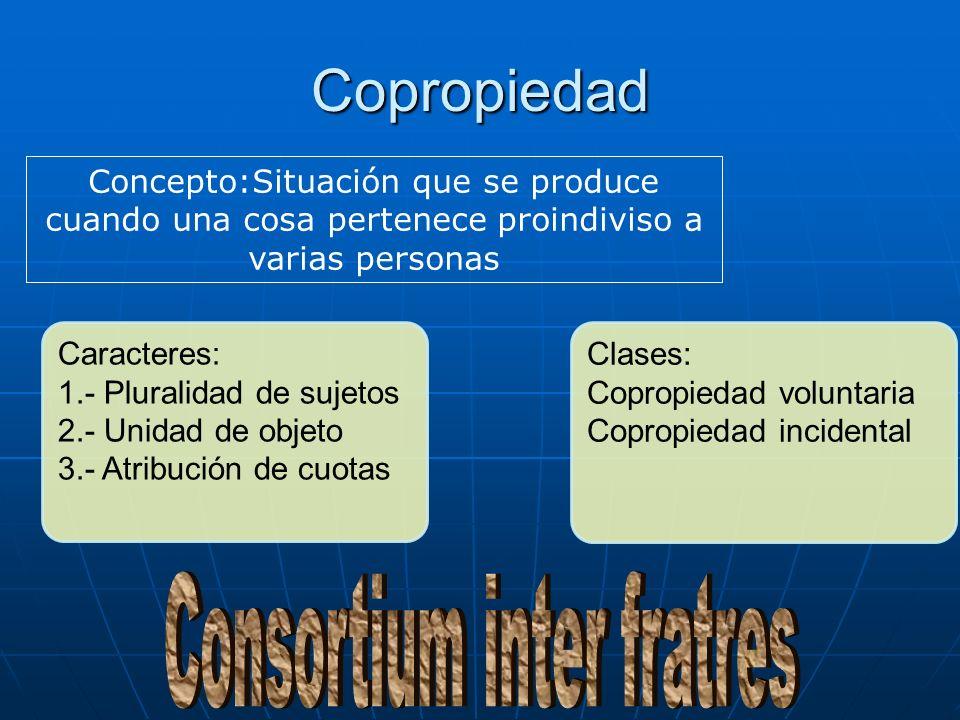 Consortium inter fratres