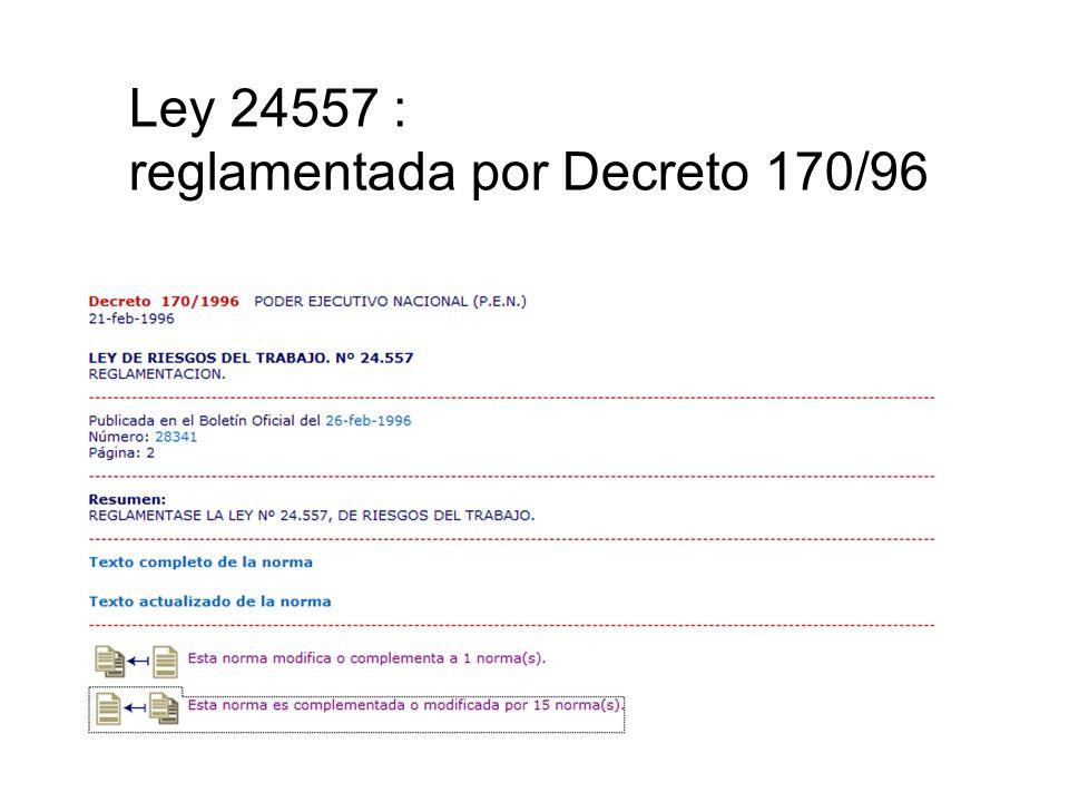 Ley 24557 : reglamentada por Decreto 170/96