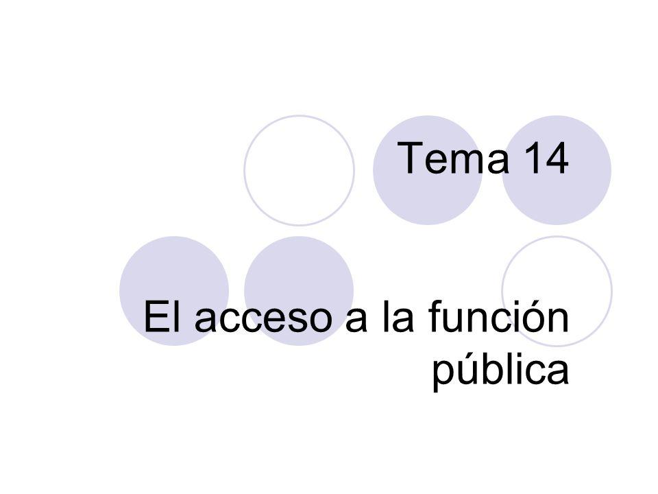 Tema 14 El acceso a la función pública