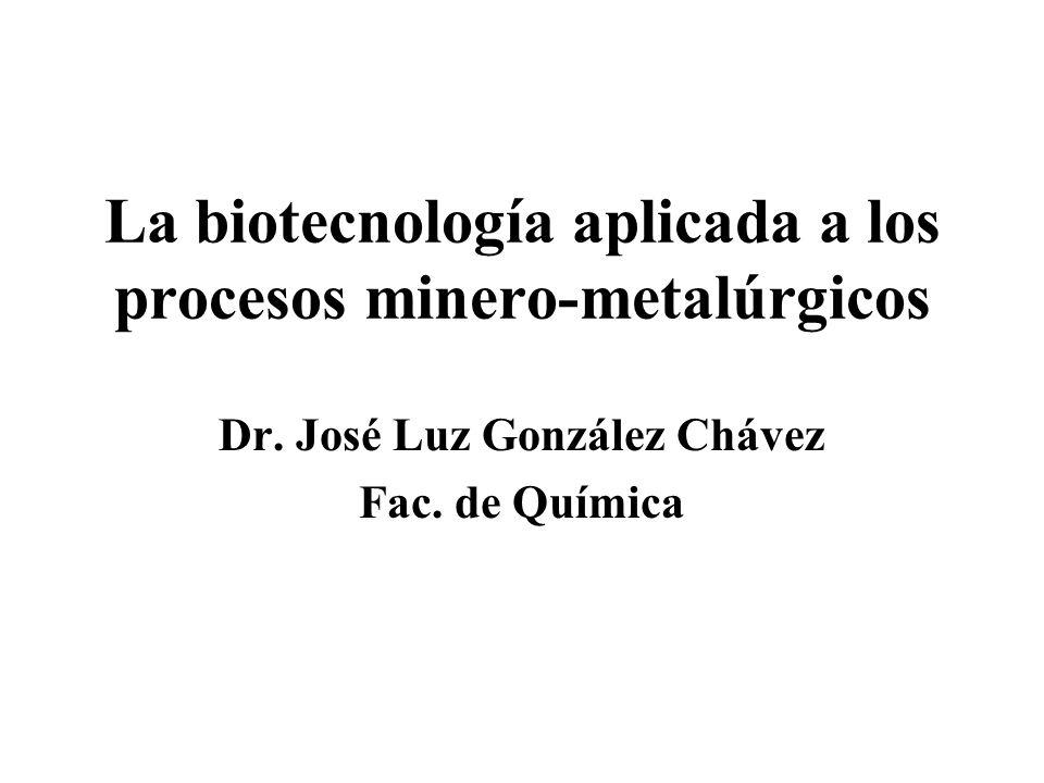 La biotecnología aplicada a los procesos minero-metalúrgicos