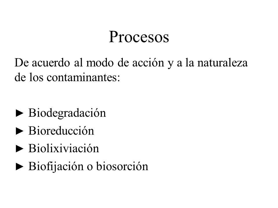Procesos De acuerdo al modo de acción y a la naturaleza de los contaminantes: ► Biodegradación. ► Bioreducción.
