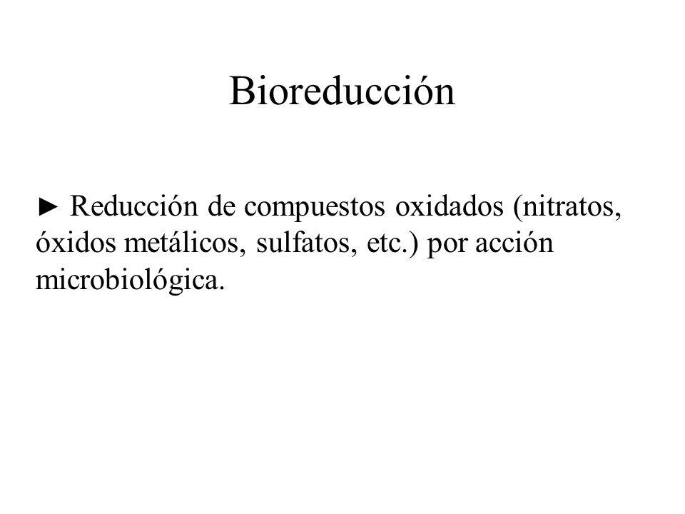 Bioreducción ► Reducción de compuestos oxidados (nitratos, óxidos metálicos, sulfatos, etc.) por acción microbiológica.