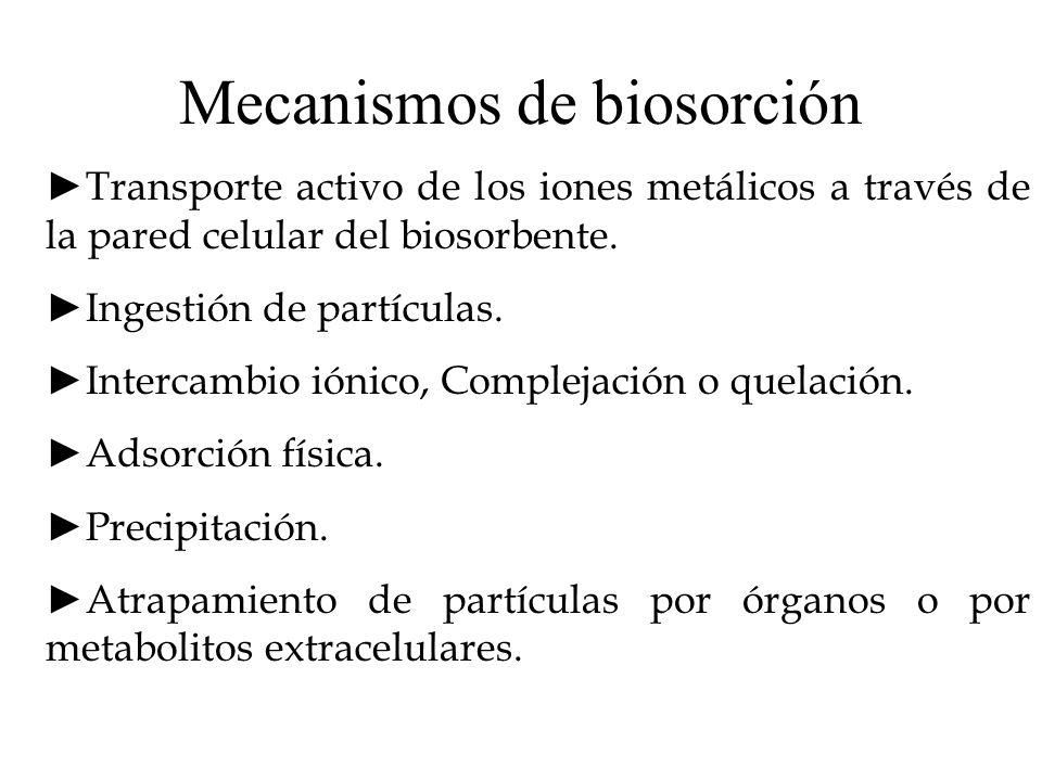 Mecanismos de biosorción