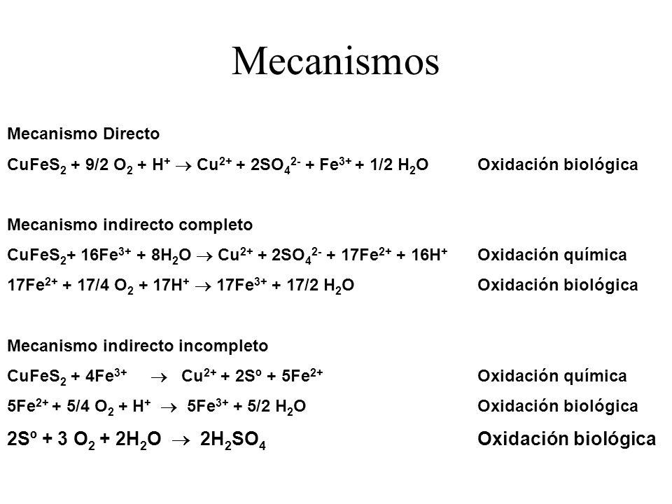 Mecanismos 2Sº + 3 O2 + 2H2O  2H2SO4 Oxidación biológica