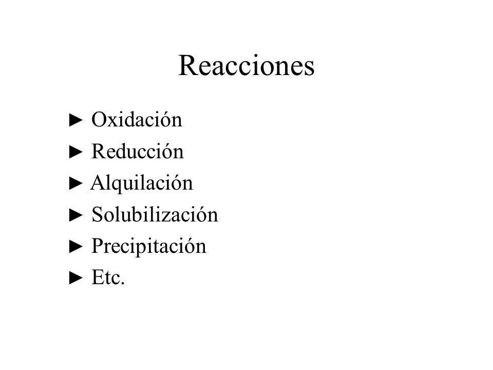 Reacciones ► Oxidación ► Reducción ► Alquilación ► Solubilización