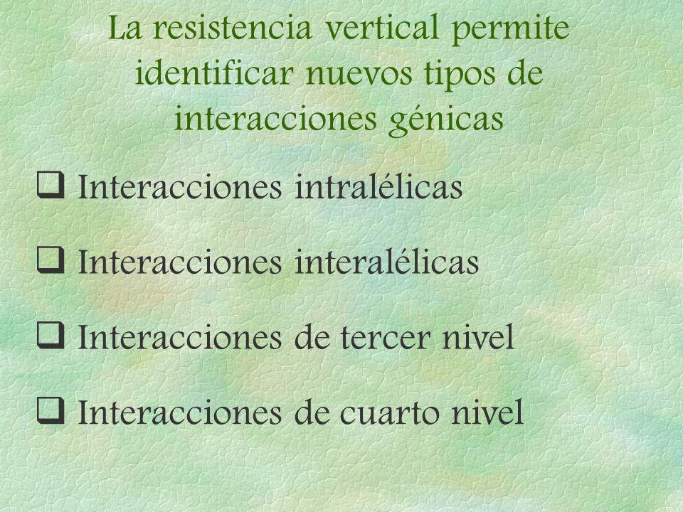 La resistencia vertical permite identificar nuevos tipos de interacciones génicas