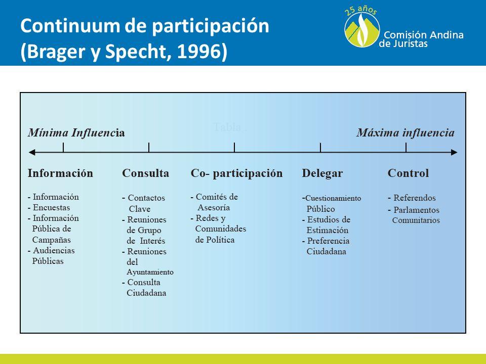 Continuum de participación (Brager y Specht, 1996)