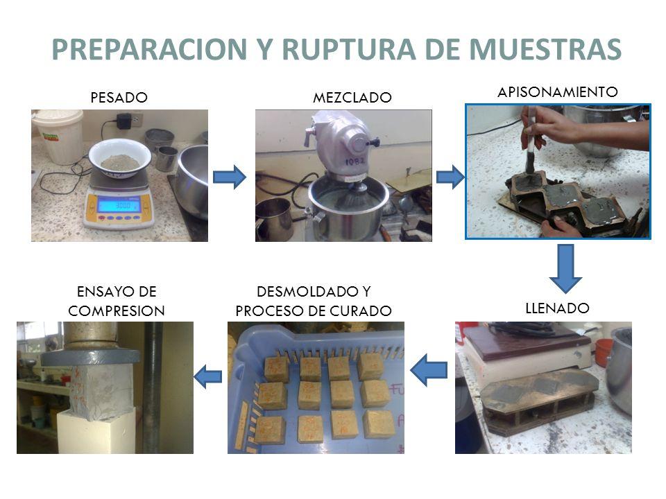PREPARACION Y RUPTURA DE MUESTRAS