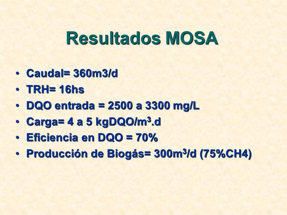 Resultados MOSA Caudal= 360m3/d TRH= 16hs