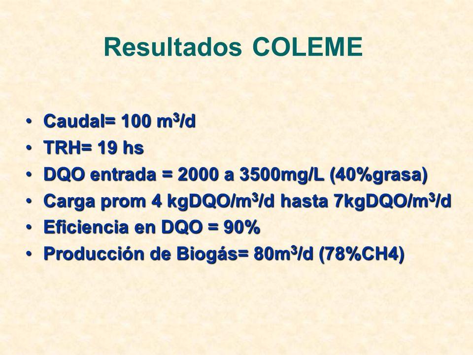 Resultados COLEME Caudal= 100 m3/d TRH= 19 hs