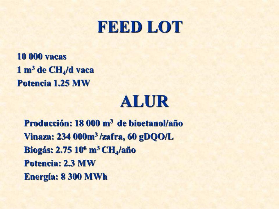 FEED LOT ALUR 10 000 vacas 1 m3 de CH4/d vaca Potencia 1.25 MW