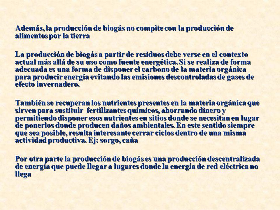 Además, la producción de biogás no compite con la producción de alimentos por la tierra
