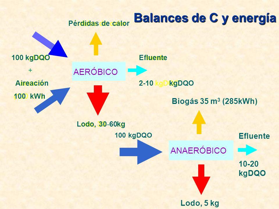 Balances de C y energía AERÓBICO ANAERÓBICO Biogás 35 m3 (285kWh)